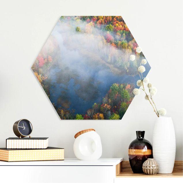 Hexagon Bild Forex - Luftbild - Herbst Symphonie
