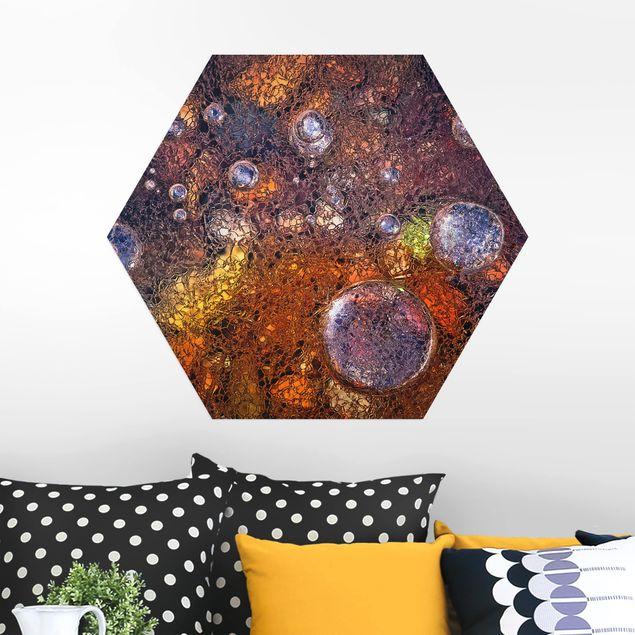 Hexagon Bild Alu-Dibond - Winter im Herbst