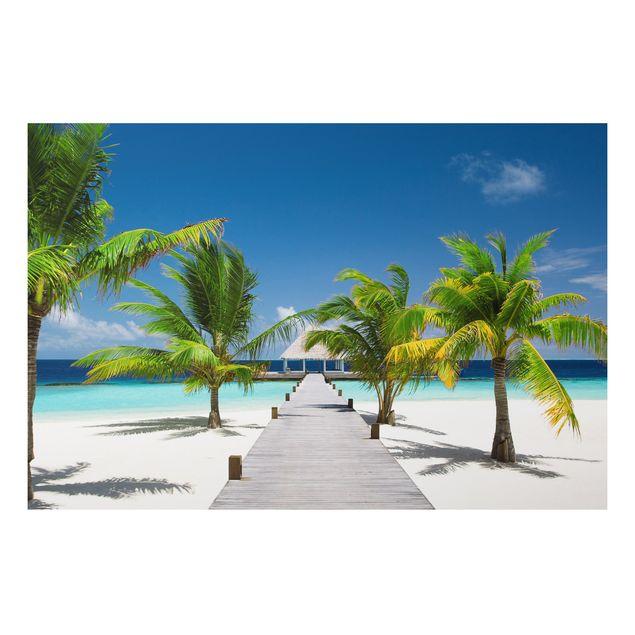 Alu-Dibond Bild - Catwalk to Paradise