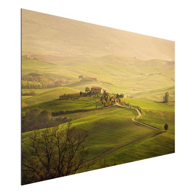 Alu-Dibond Bild - Chianti Toskana
