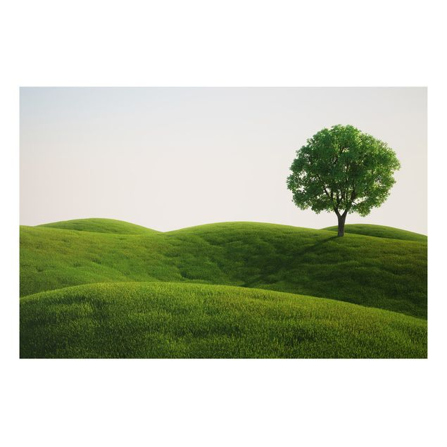 Alu-Dibond Bild - Grüne Ruhe