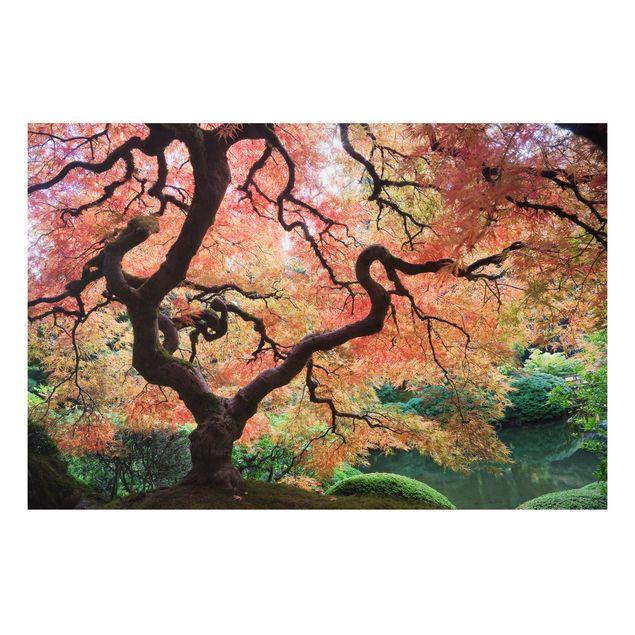 Alu-Dibond Bild - Japanischer Garten