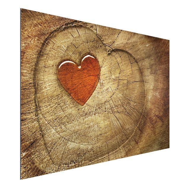Alu-Dibond Bild - Natural Love Panorama