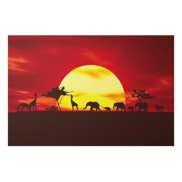 Alu-Dibond Bild - Sunset Caravan