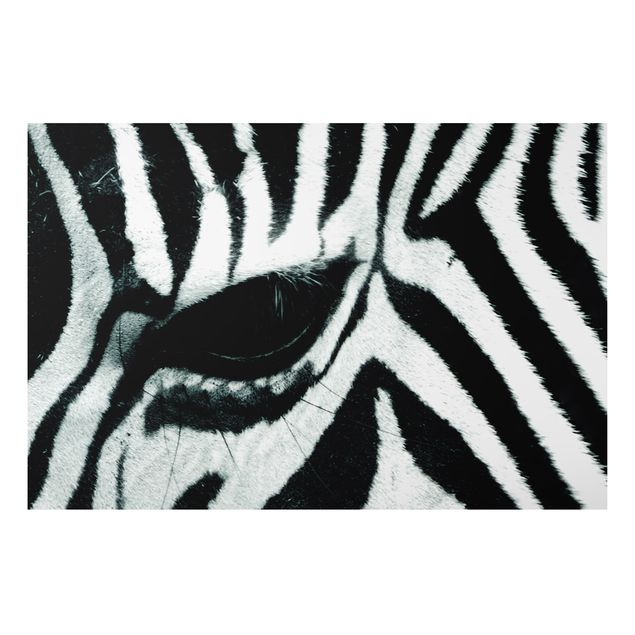 Alu-Dibond Bild - Zebra Crossing No.4