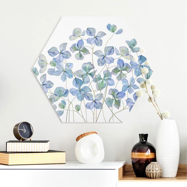 Hexagon Bild Forex - Blaue Hortensienblüten