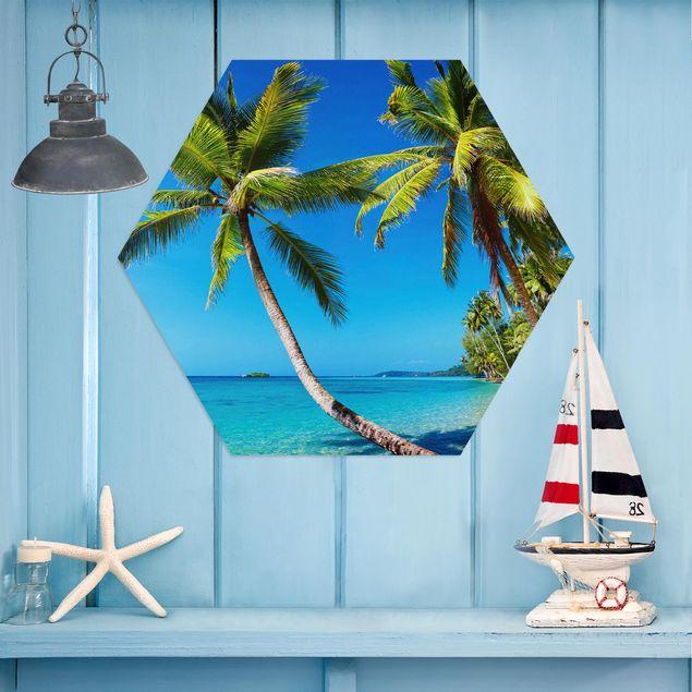 Hexagon Bild Alu-Dibond - Beach of Thailand