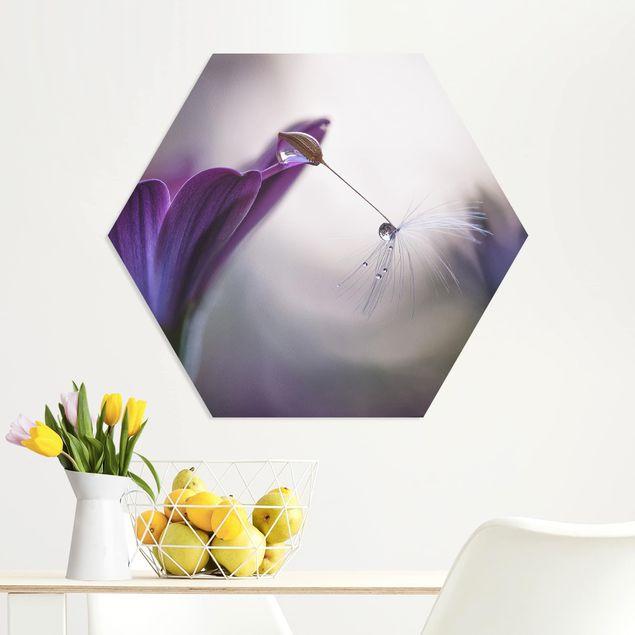 Hexagon Bild Forex - Purple Rain