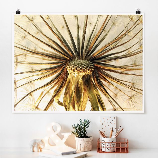 Poster - Dandelion Close Up - Querformat 3:4