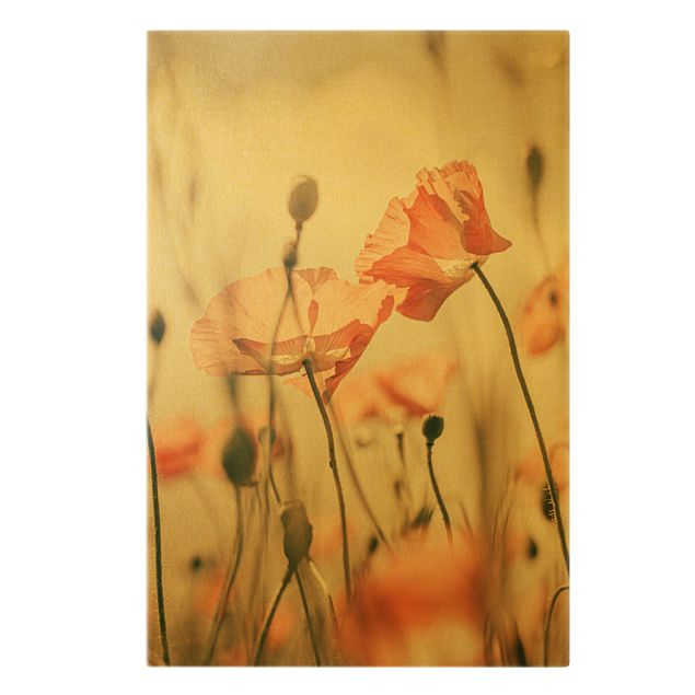 Leinwandbild Gold - Mohnblüten im Sommerwind - Hochformat 2:3