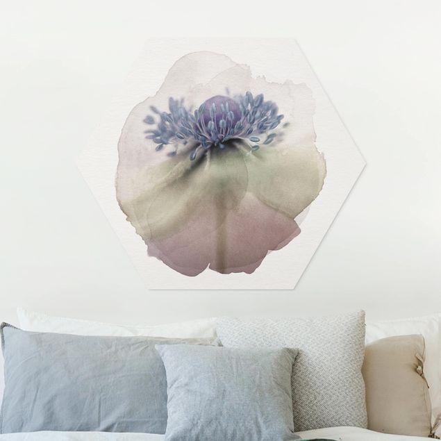 Hexagon Bild Forex - Wasserfarben - Anemone in Violett