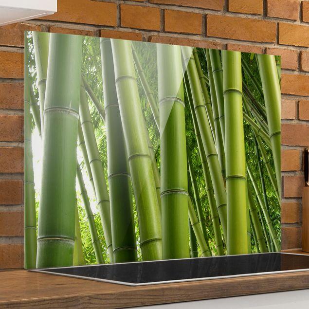 Glas Spritzschutz - Bamboo Trees - Querformat - 4:3