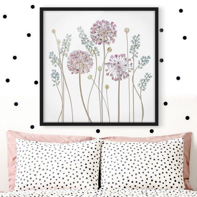Bild mit Rahmen - Allium Illustration - Quadrat 1:1