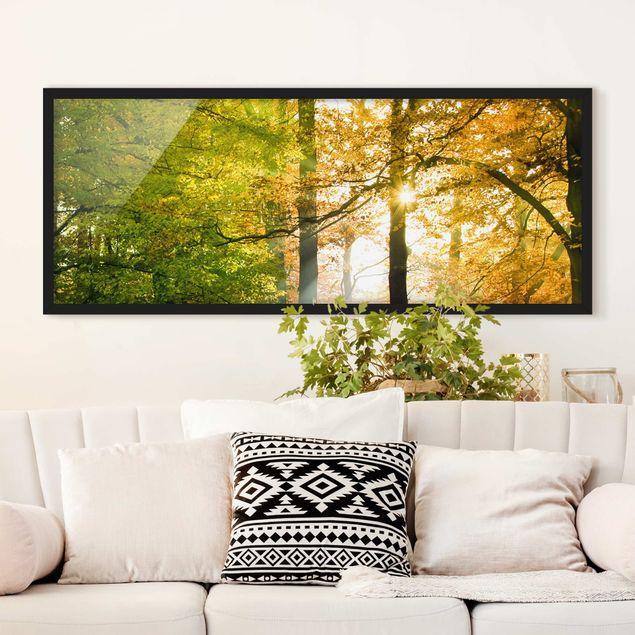 Bild mit Rahmen - Morning Light - Panorama Querformat
