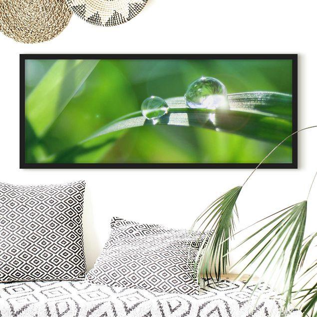 Bild mit Rahmen - Green Ambiance II - Panorama Querformat