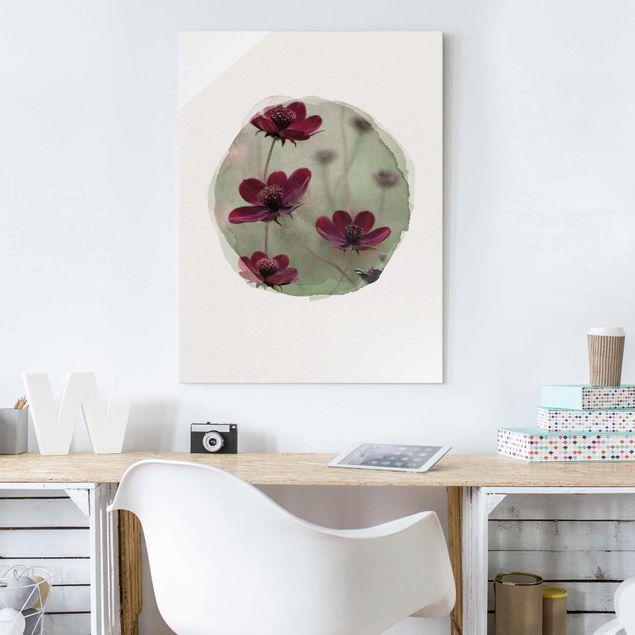 Glasbild - Wasserfarben - Pinke Kosmeen - Hochformat 4:3