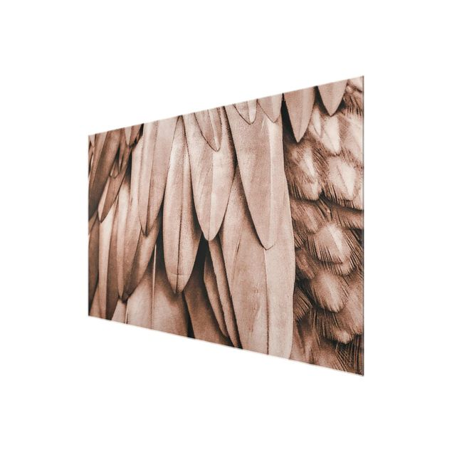 Glasbild - Federn in Rosegold - Querformat
