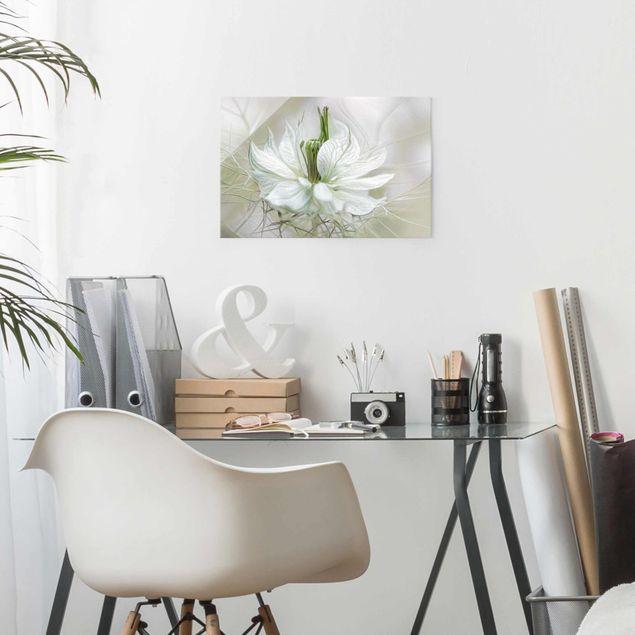 Glasbild - Weiße Nigella - Quer 3:2