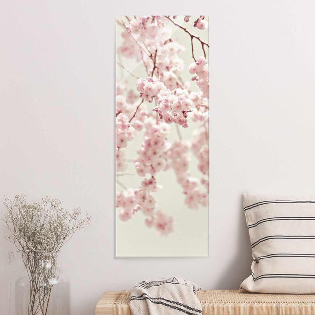 Glasbild - Kirschblütentanz - Hochformat