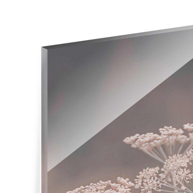 Glasbild - Wilde Doldenblüten - Quadrat
