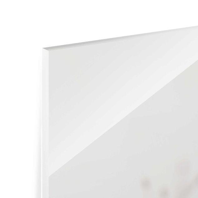 Glasbild - Zarte Gräser im Windschatten - Quadrat