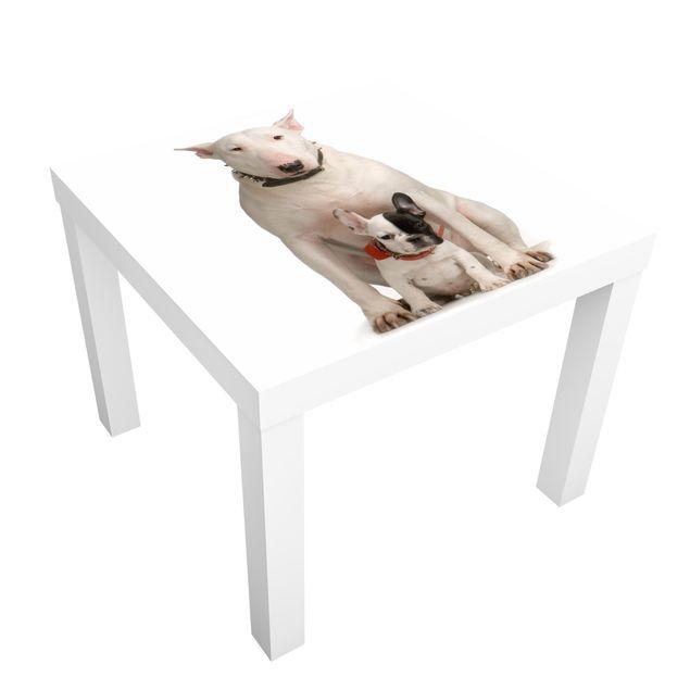 Möbelfolie für IKEA Lack - Klebefolie No.365 Bull Terrier and Friend
