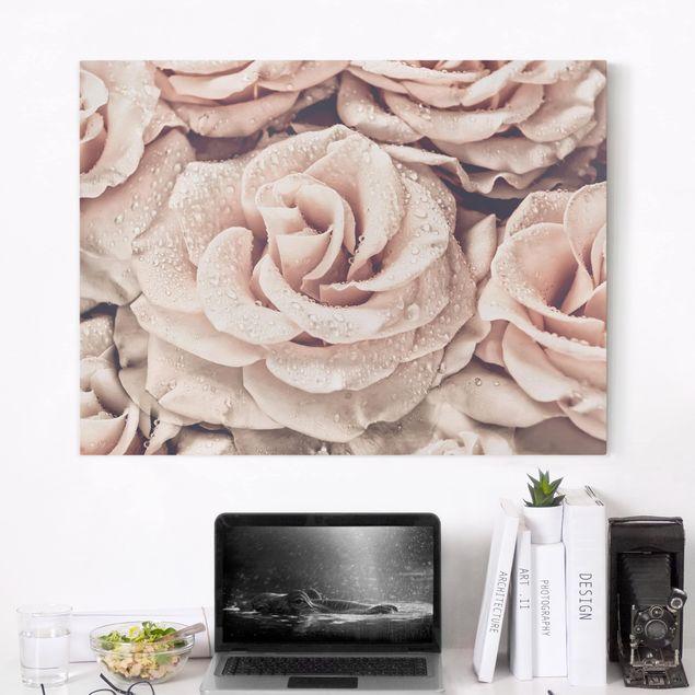 Leinwandbild - Rosen Sepia mit Wassertropfen - Querformat 3:4