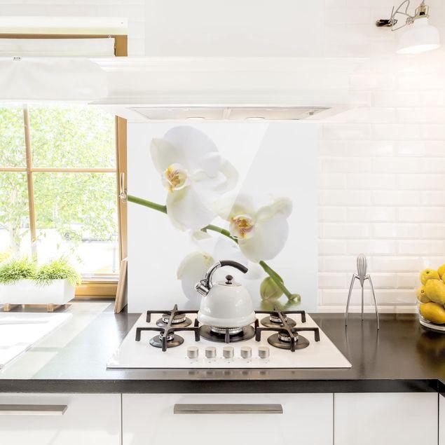 Glas Spritzschutz - White Orchid Waters - Quadrat - 1:1
