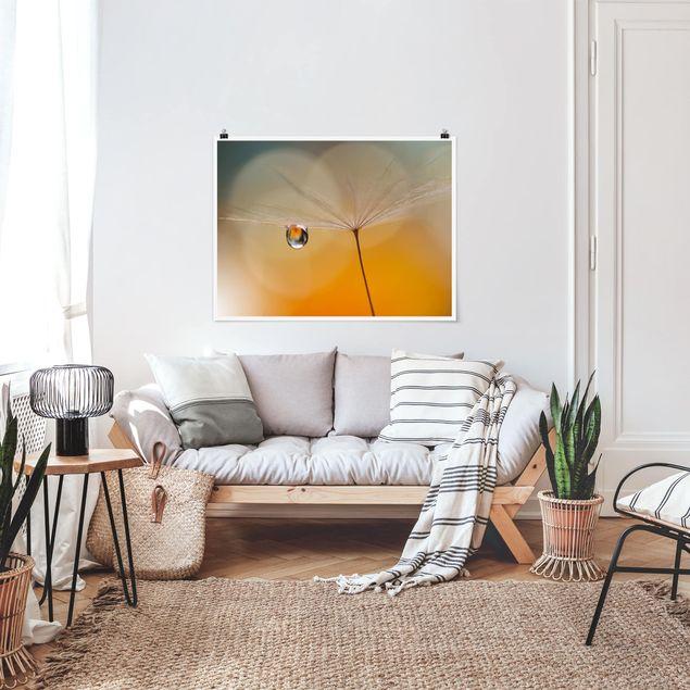 Poster - Pusteblume in Orange - Querformat 3:4