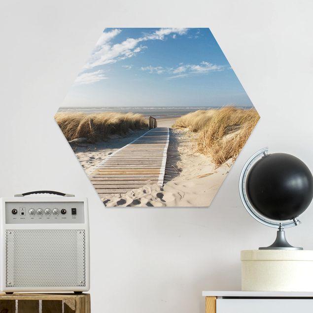 Hexagon Bild Forex - Ostsee Strand
