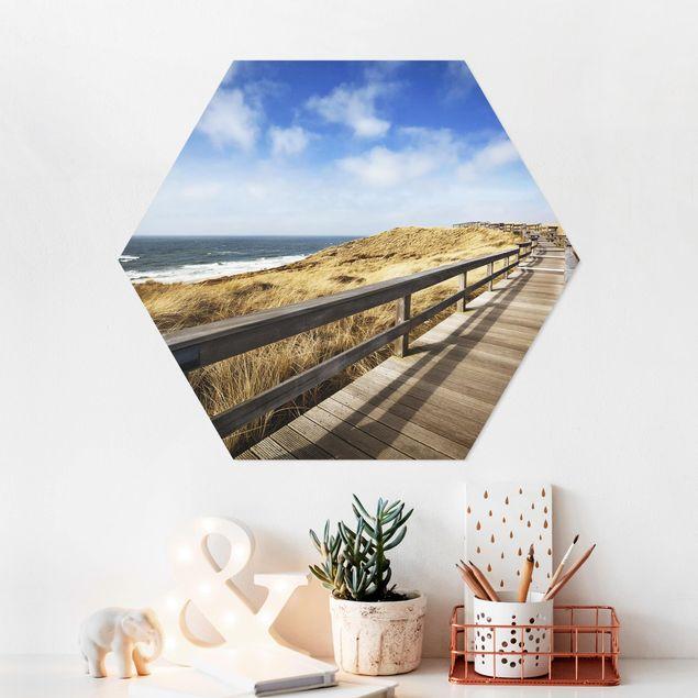 Hexagon Bild Forex - Nordseespaziergang