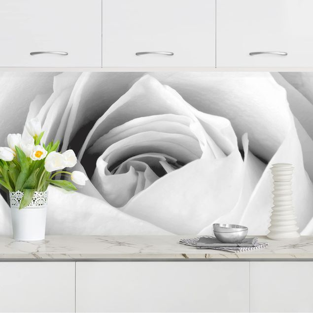 Küchenrückwand - Close Up Rose
