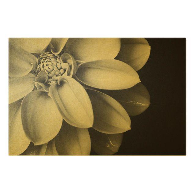 Leinwandbild Gold - Im Herzen einer Dahlie Schwarz-Weiß - Querformat 3:2