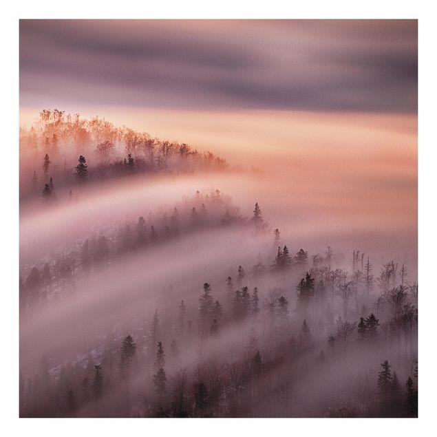 Forex Fine Art Print - Nebelflut - Quadrat 1:1
