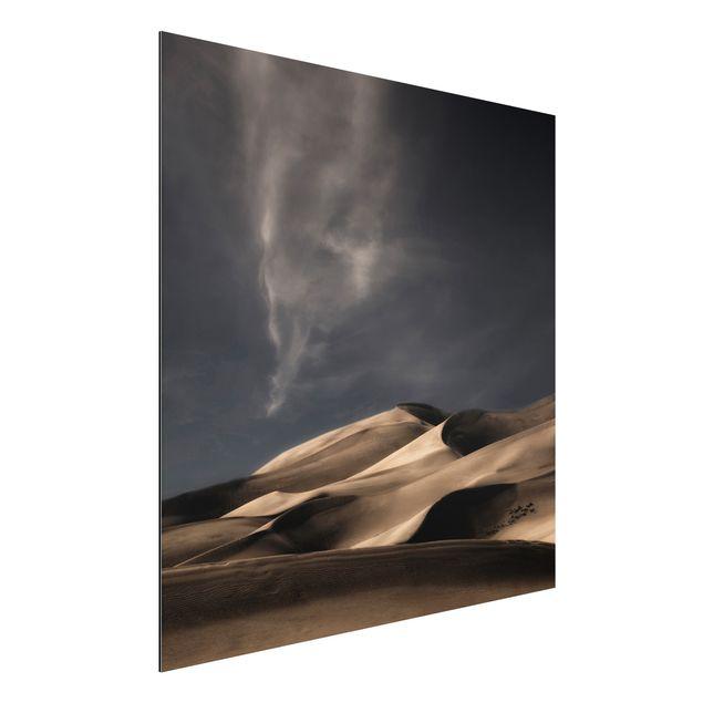 Alu-Dibond Bild - Colorado Dünen