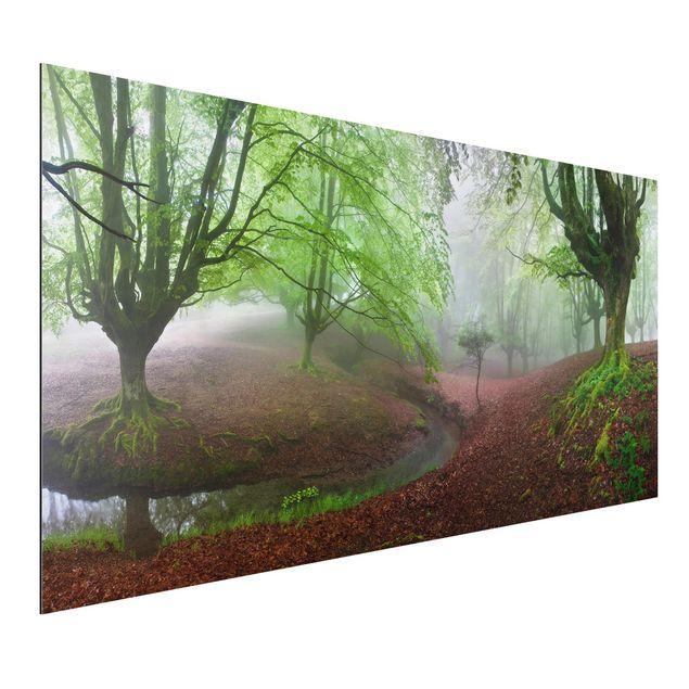 Alu-Dibond Bild - Der Wald Marvillador