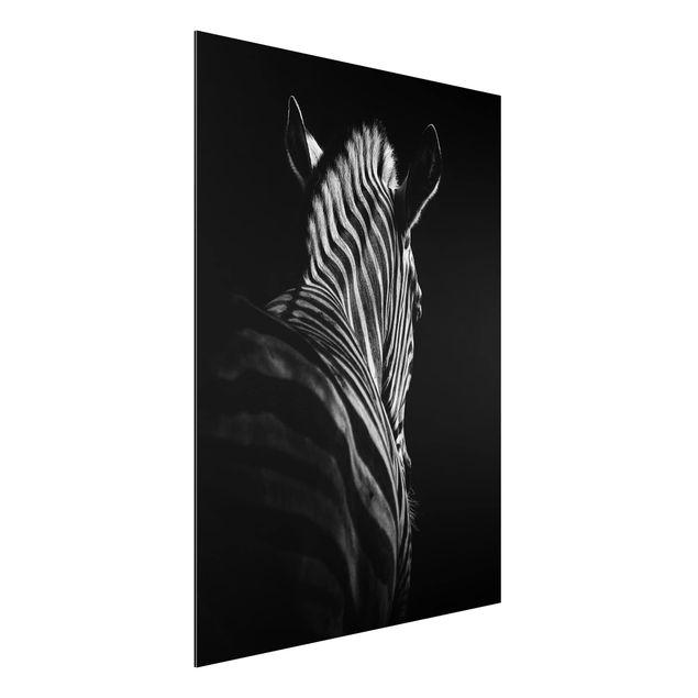 Aluminium Print - Dunkle Zebra Silhouette - Hochformat 4:3