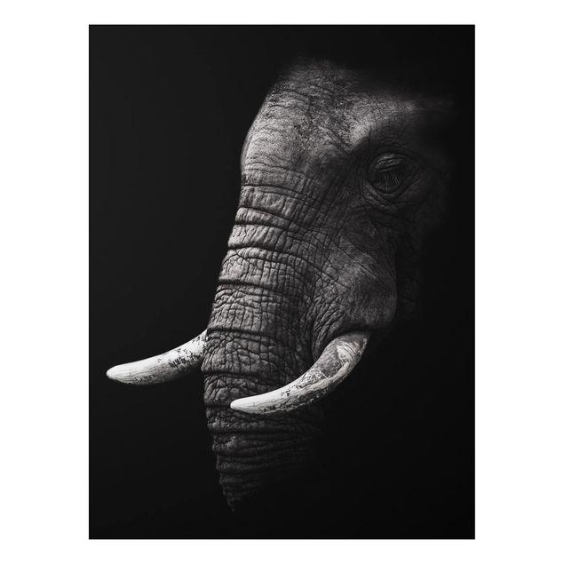 Aluminium Print - Dunkles Elefanten Portrait - Hochformat 4:3