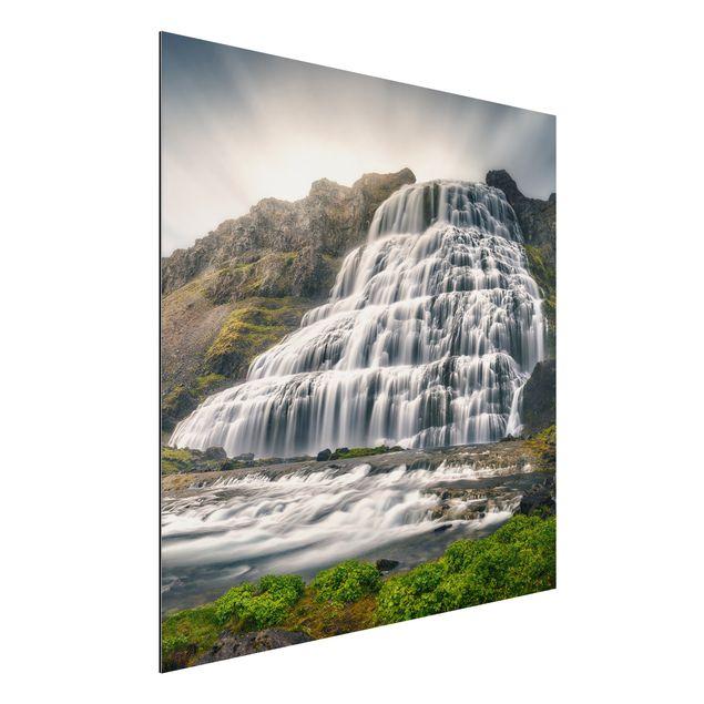 Alu-Dibond Bild - Dynjandi Wasserfall