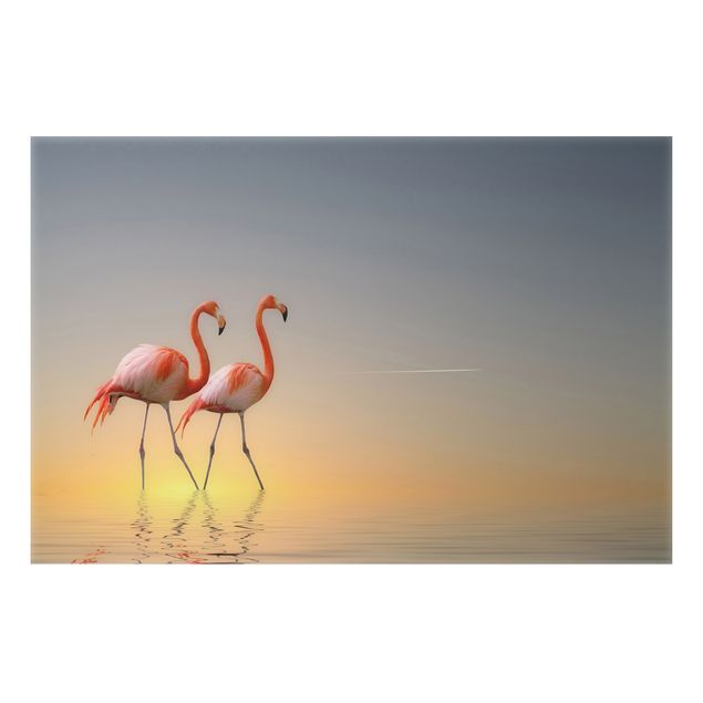 Alu-Dibond Bild - Flamingo Love