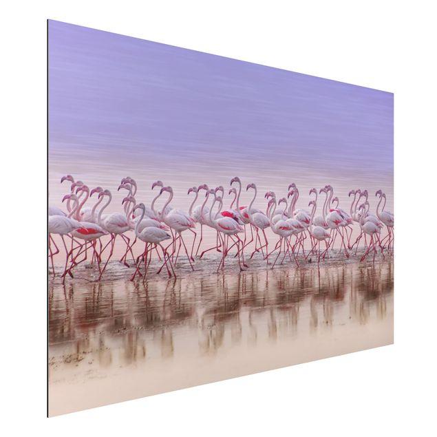 Aluminium Print - Flamingo Party - Querformat 2:3