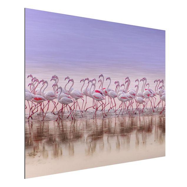Aluminium Print - Flamingo Party - Querformat 3:4