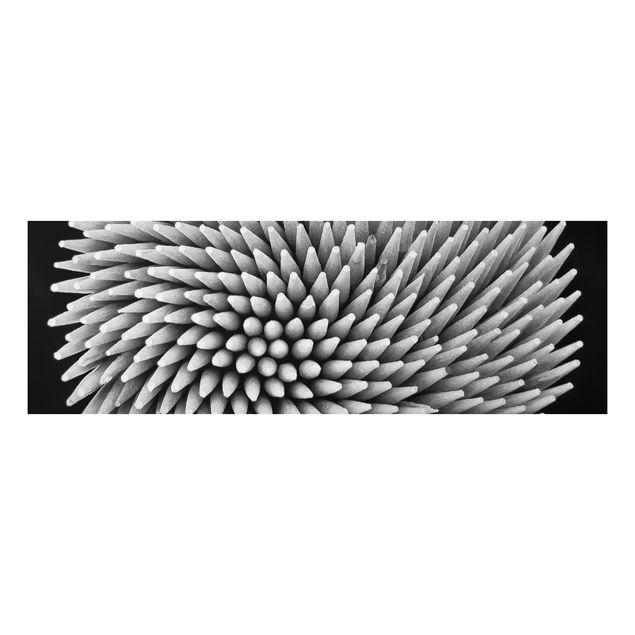 Alu-Dibond Bild - Hypnosis