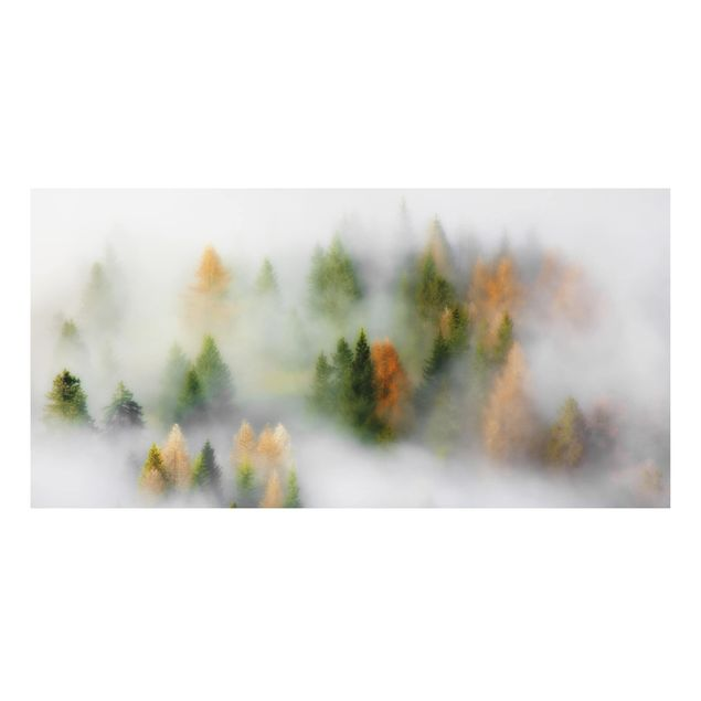 Aluminium Print - Nebelwald im Herbst - Querformat 1:2