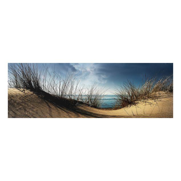 Alu-Dibond Bild - Sanddüne