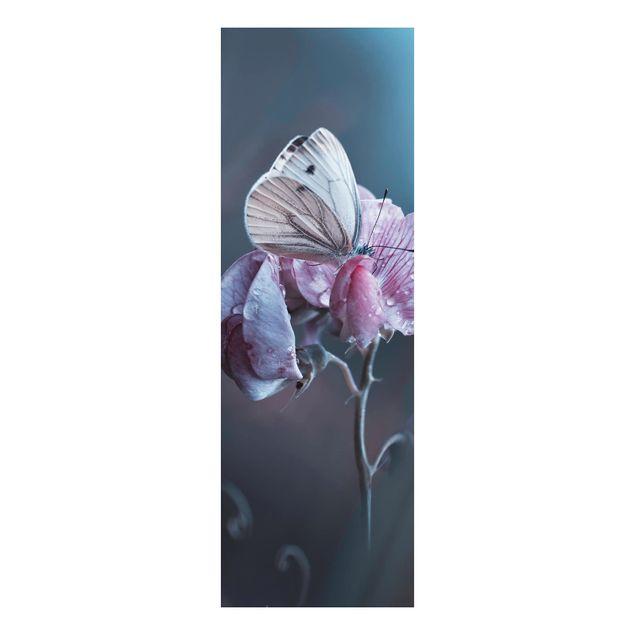 Alu-Dibond Bild - Schmetterling im Regen