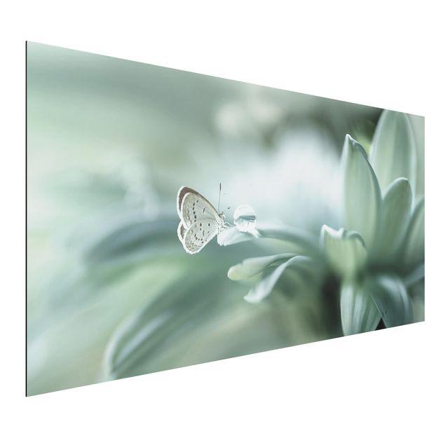 Aluminium Print - Schmetterling und Tautropfen in Pastellgrün - Querformat 1:2