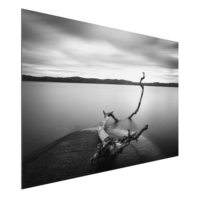 Aluminium Print - Sonnenuntergang am See schwarz-weiß - Querformat 2:3