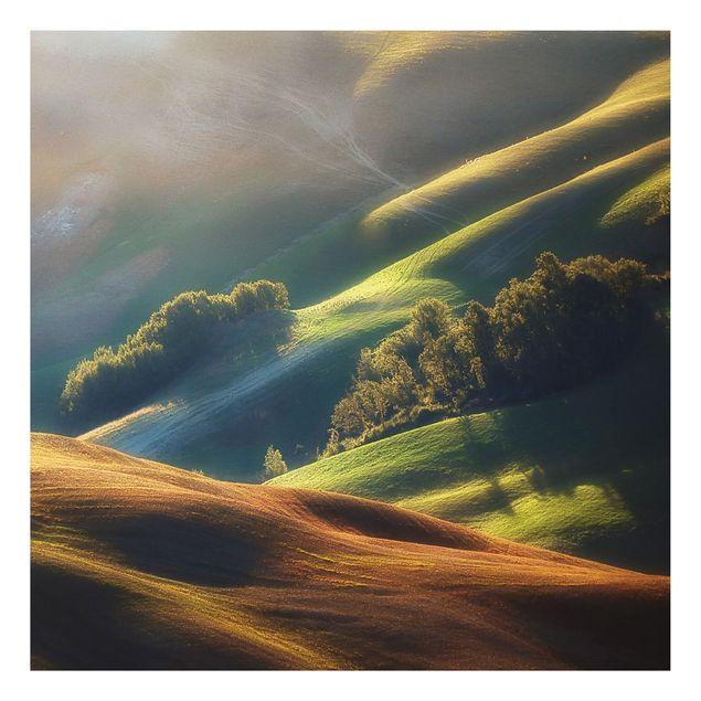 Alu-Dibond Bild - Toskana am Morgen
