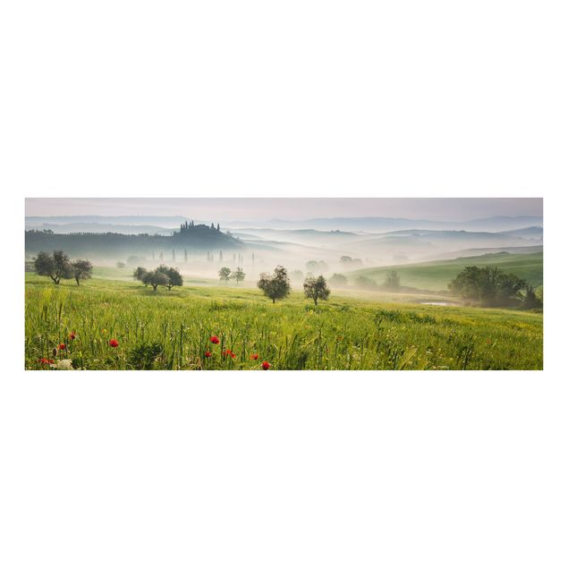 Alu-Dibond Bild - Toskana Frühling
